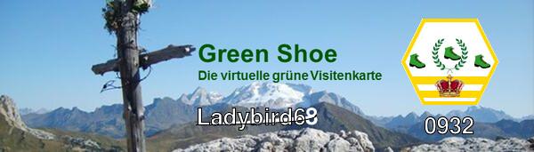 Green Shoe Banner Ladybird68
